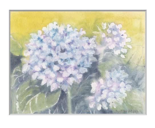 Nr.142  Hortensie - Aquarell 2017