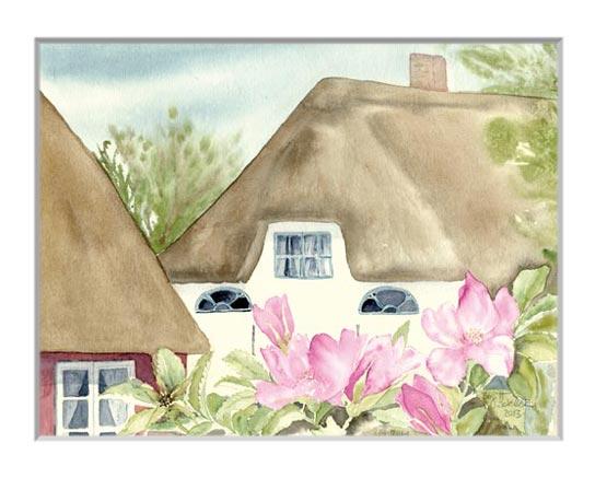 Nr.71  Haus hinter Rosen - Aquarell 2014