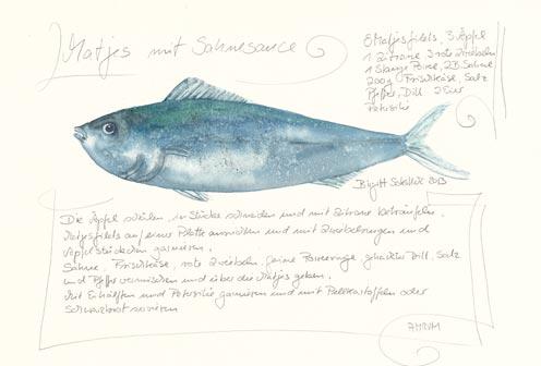 Nr.75  Matjes mit Sahnesauce - Aquarell 2013